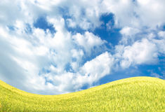 Sky and field Royalty Free Stock Images