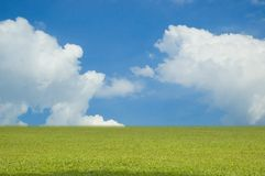 Sky and Field. Blue Sky with Clouds and Field Royalty Free Stock Photo