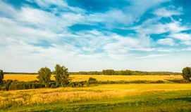 Sky and field. Borodino, Mozhaysk district, Moscow region royalty free stock images