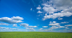 Sky and field Royalty Free Stock Photo