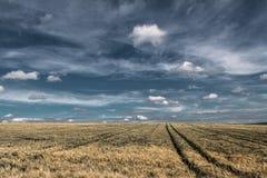 Sky, Field, Grassland, Ecosystem stock photography