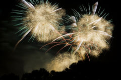 The sky is filled with feathers after an explosion of fireworks Royalty Free Stock Image