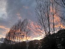 Sky on fire. The gray clouds are coming orange on the sunset. Photo was made in winter and trees looking naked stock photos