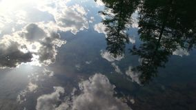 Sky and forest reflected in water. Sky and forest reflected in calm water stock video footage