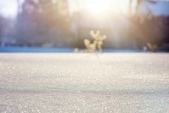 Sky, Freezing, Winter, Sunlight Royalty Free Stock Photo
