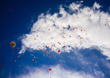 Sky full of Baloons #5 Royalty Free Stock Image