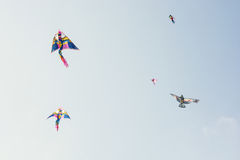 Sky full of colorful flying kites. Leisure activity Royalty Free Stock Images