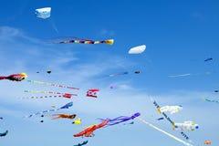 Sky full of Kitesl Royalty Free Stock Images