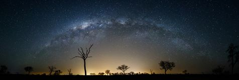 A Sky Full of Stars royalty free stock photos