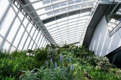 Sky Garden in London City Stock Photos