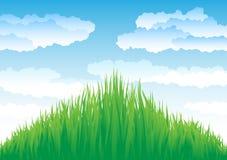 Sky_and_grass Foto de Stock Royalty Free