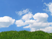 Sky and grass Stock Photography