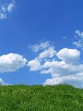 Sky and grass. Background Royalty Free Stock Photography
