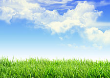 Free Sky Grass Royalty Free Stock Photos - 26699248