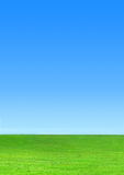 Sky and grass. Green meadow with blue sky gradient Royalty Free Stock Photos