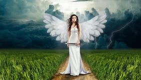 Sky, Grass, Angel, Phenomenon Stock Image