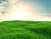 Sky and grass background, fresh green fields. Under the blue sky. 3d illustration Royalty Free Stock Photo