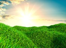 Sky and grass background, fresh green fields. Under the blue sky. 3d illustration Royalty Free Stock Photos
