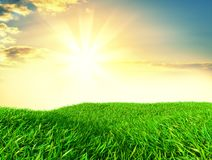 Sky and grass background, fresh green fields. Under the blue sky. 3d illustration Royalty Free Stock Image