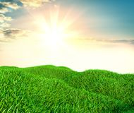 Sky and grass background, fresh green fields. Under the blue sky. 3d illustration Stock Photo