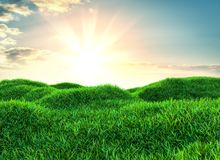 Sky and grass background, fresh green fields. Under the blue sky. 3d illustration Stock Photos
