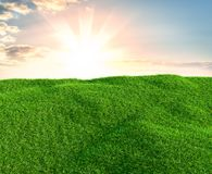 Sky and grass background, fresh green fields. Under the blue sky. 3d illustration Stock Photography