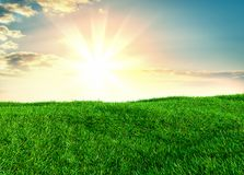 Sky and grass background, fresh green fields. Under the blue sky. 3d illustration Stock Images