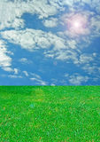 Sky and grass. Field of grass and blue sky Stock Image