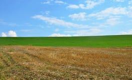 Sky, grass, field Stock Image