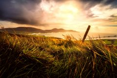 Sky, Grass, Field, Horizon stock image