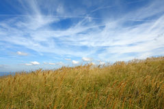 Sky and grass - mountain meadow. Beautiful autumn day in the mountain, with just enough of clouds stock photo