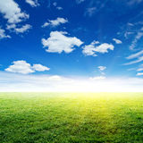 Sky and grass. Summer background Royalty Free Stock Photos