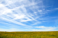 Sky and grassland. Blue sky with cloud above the green grassland royalty free stock photography