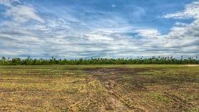 Sky, Grassland, Ecosystem, Field stock image