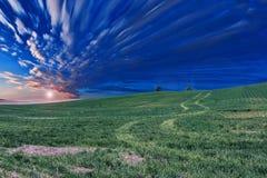 Sky, Grassland, Ecosystem, Field stock photography