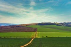 Sky, Grassland, Field, Green royalty free stock photography