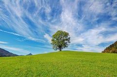 Sky, Grassland, Nature, Cloud royalty free stock photography