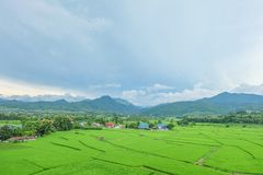 Sky and green. The beutiful green meadow and blue sky of Nan province of Thailand Royalty Free Stock Photos