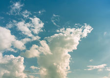 Sky. Green blue sky with orange and white clouds Royalty Free Stock Images
