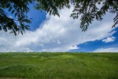 Sky with green fields. Bang Phra, Chonburi, Thailand Stock Photo