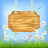 Sky Green Grass Flowers Wood Board. Vector wooden sign board hanging on a rope, blue sky, green grass, Daisy flowers, butterfly, dragonfly. Summer day natural Stock Images