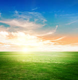 Sky and green meadow Royalty Free Stock Photo
