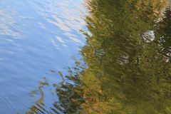 Sky and green tree reflected in water royalty free stock photo