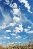 Sky and ground stock image