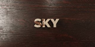 Sky - grungy wooden headline on Maple - 3D rendered royalty free stock image. This image can be used for an online website banner ad or a print postcard royalty free illustration