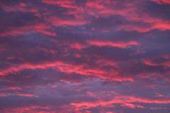 The sky has turned scarlet and purple. stock image