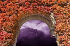 Sky with heavy storm clouds. Seen through the arch covered with red ivy leaves Royalty Free Stock Photos