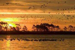 Sky, Horizon, Sunset, Sunrise royalty free stock images