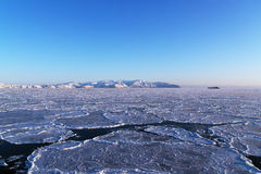 Sky and ice. Young ice in the bay Shelting Royalty Free Stock Image