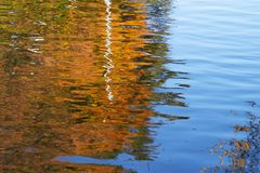 Sky and leaves. Reflected in the water surface like a natural abstract paint Royalty Free Stock Images